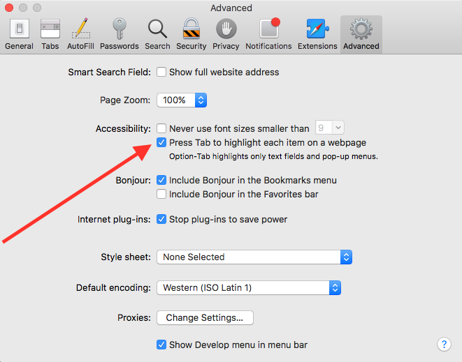 Safari advanced settings panel