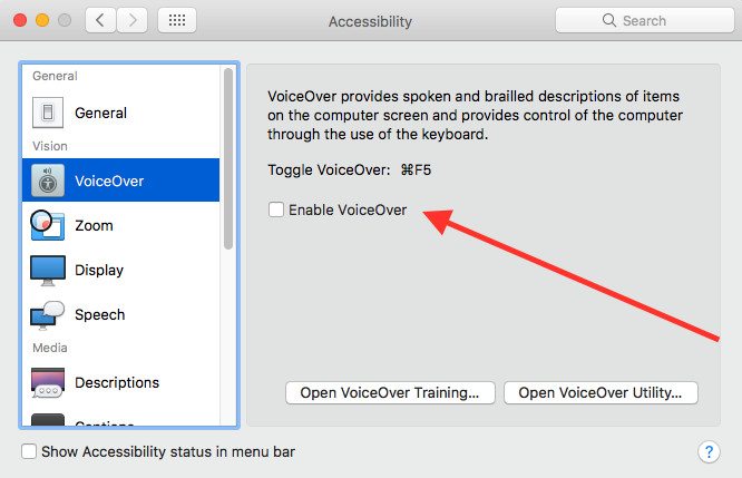 Mac accessibility preferences panel